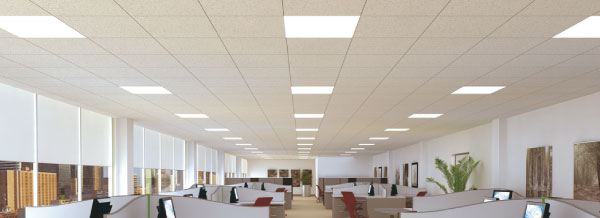 T8 LED General Lighting Interlectric Office Space